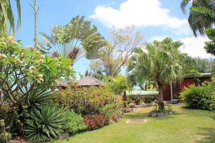 Jardin tropical les lataniers r union Entretien jardin ile de la reunion