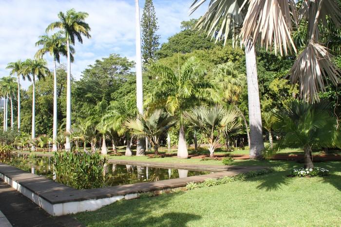 Jardin de l 39 etat saint denis ile r union - Mobilier jardin cdiscount saint denis ...