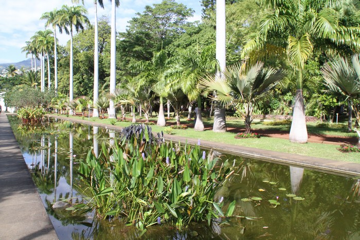 Jardin de l 39 etat saint denis ile r union - Jardin contemporain design saint denis ...