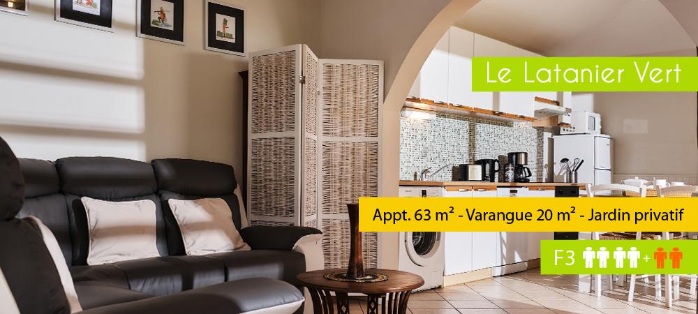 Location-ile-reunion-Latanier-vert2018