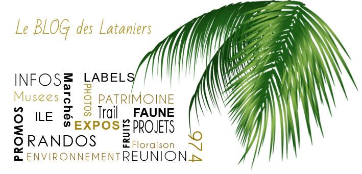 blog-les-lataniers.2016