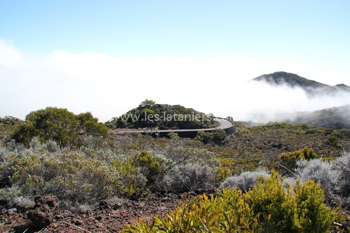 Route-volcan-ile-reunion-023