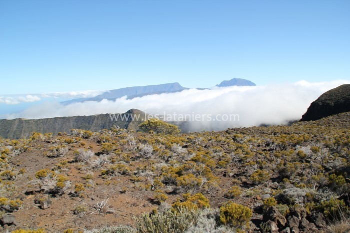 Route-volcan-ile-reunion-024