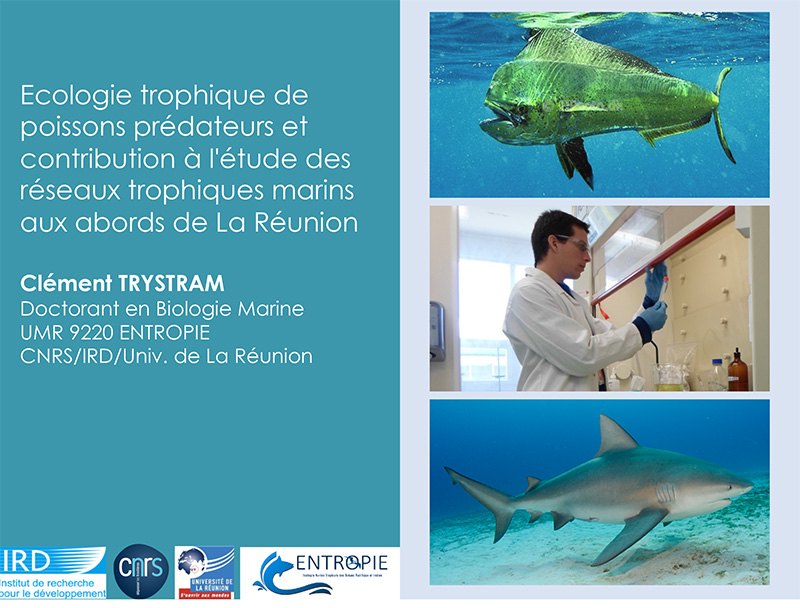 conference-biologie-marine-ile-reunion