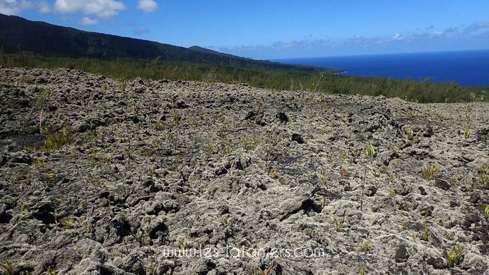 Rando volcan Réunion 7