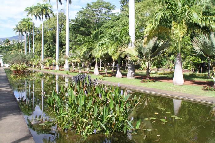 jardin-etat-ile-reunion-013
