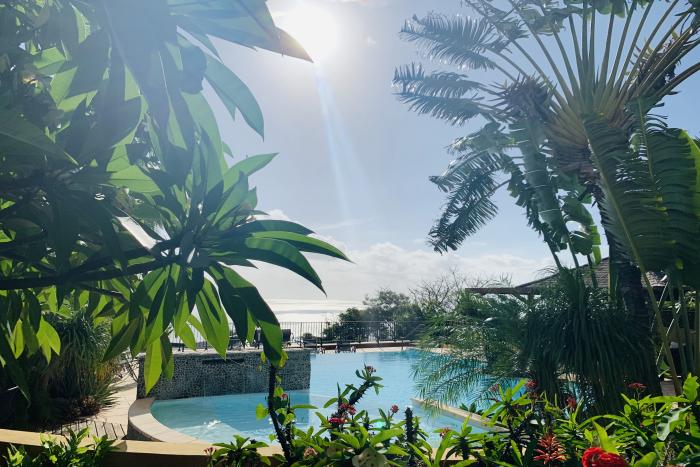 jardin tropical 7